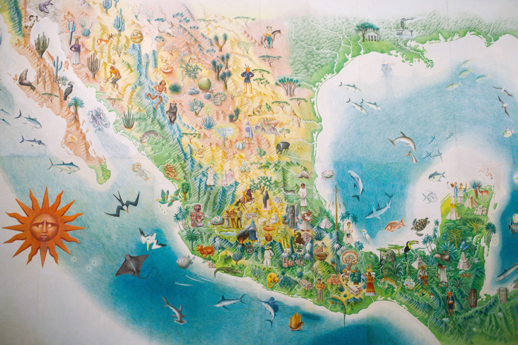 Map of Mexico's biodiversity by Jose Miguel Covarrubias Duclaud